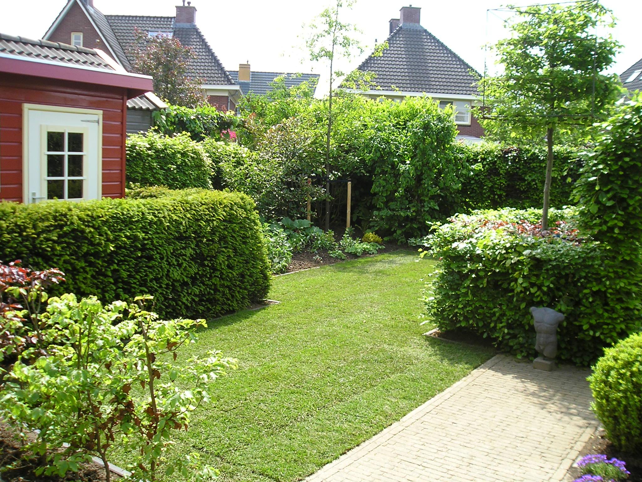 Tegels Leggen Tuin : Kosten tegels leggen tuin mulberry lily prijs